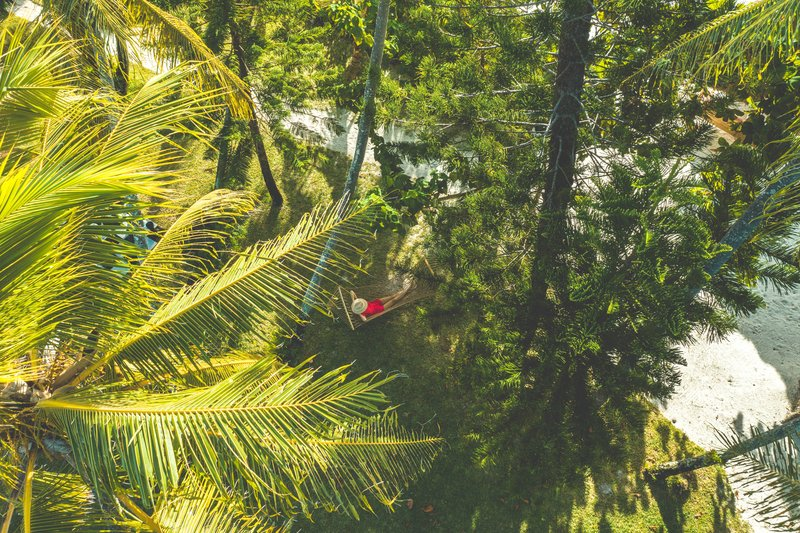 Le Meridien Ile Des Pins-Hammock In The Coconut Grove<br/>Image from Leonardo