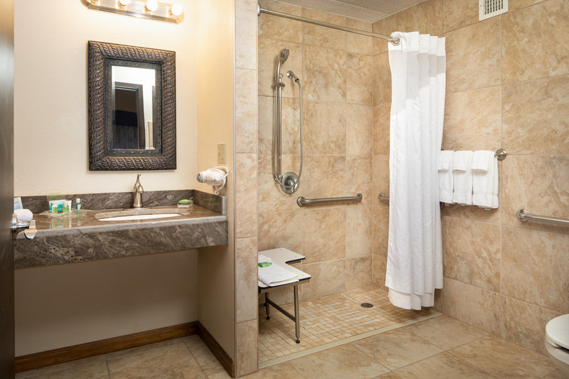 Holiday Inn Hotel & Suites Charleston West-Our rooms were designed for the comfort and ability of every body!<br/>Image from Leonardo