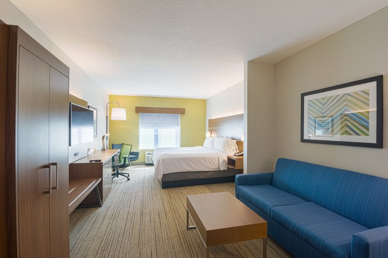 Holiday Inn Express & Suites Tampa USF Busch Gardens-King Bed Suite<br/>Image from Leonardo