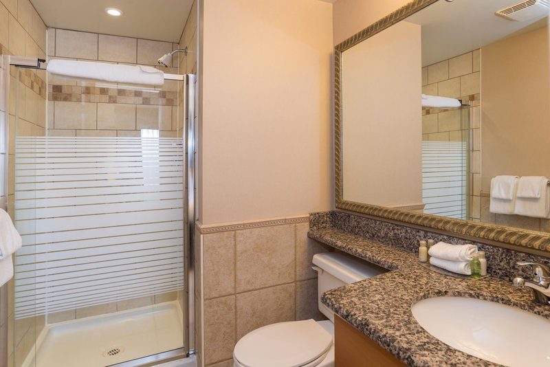 Sandman Hotel Calgary Airport-Executive Jacuzzi Suite With Sofa Bed Bath<br/>Image from Leonardo