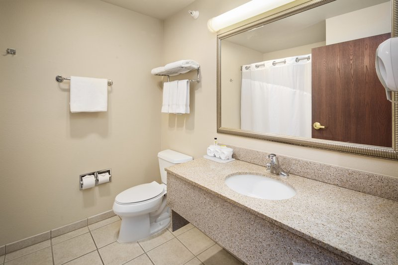Holiday Inn Express & Suites Hill City Mt. Rushmore Area-Private bathroom<br/>Image from Leonardo
