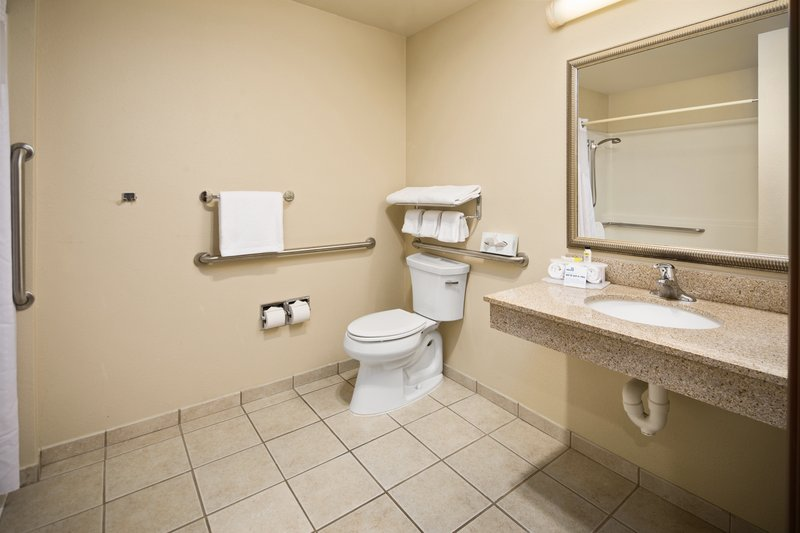 Holiday Inn Express & Suites Hill City Mt. Rushmore Area-Private bathroom with roll-in shower<br/>Image from Leonardo