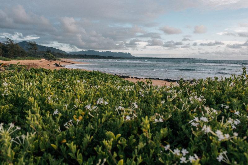 Kauai Beach Resort-Kauai Beach Resort - Beachfront - Nukolii Beach<br/>Image from Leonardo