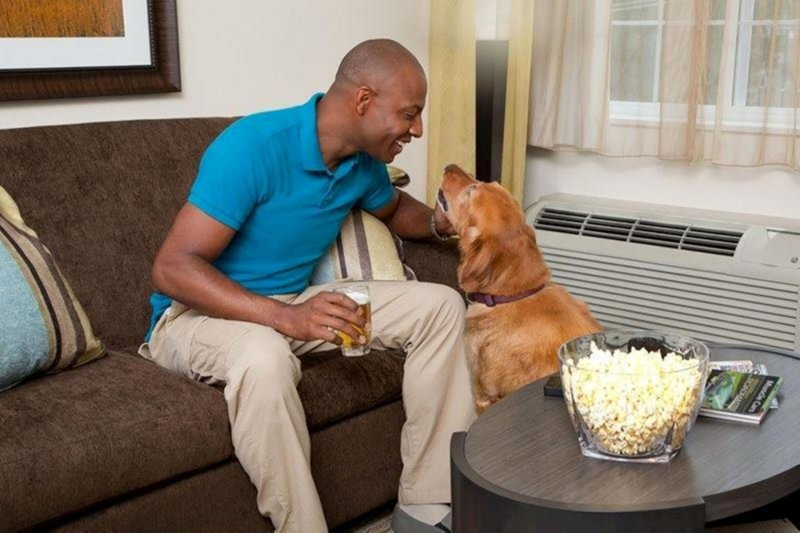 Candlewood Suites Boston-Burlington-Our hotel accepts pets - call for details.<br/>Image from Leonardo