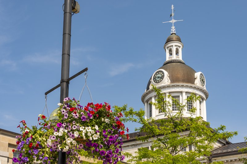 Holiday Inn Kingston - Waterfront-Beautiful scenery walking around downtown Kingston<br/>Image from Leonardo