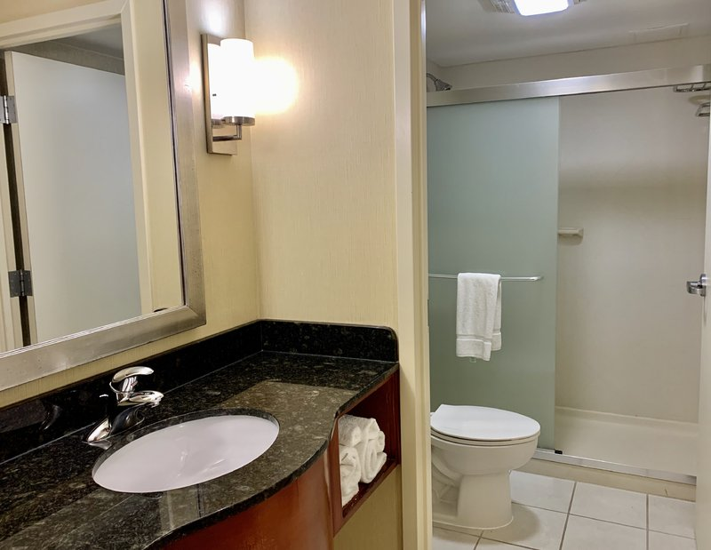 Holiday Inn Hotel & Suites Virginia Beach - North Beach-King or Two Queen Bed Oceanfront Bathroom<br/>Image from Leonardo