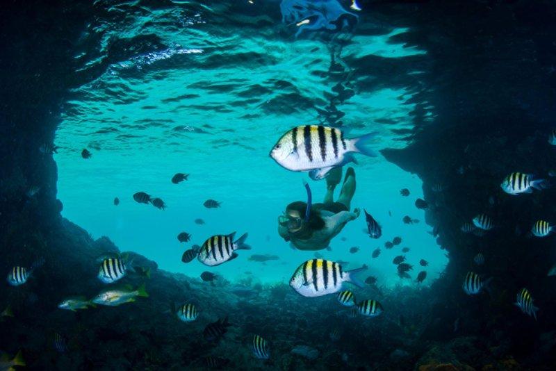 Ocean Club, A Four Seasons Resort, Bahamas-Snorkeling<br/>Image from Leonardo
