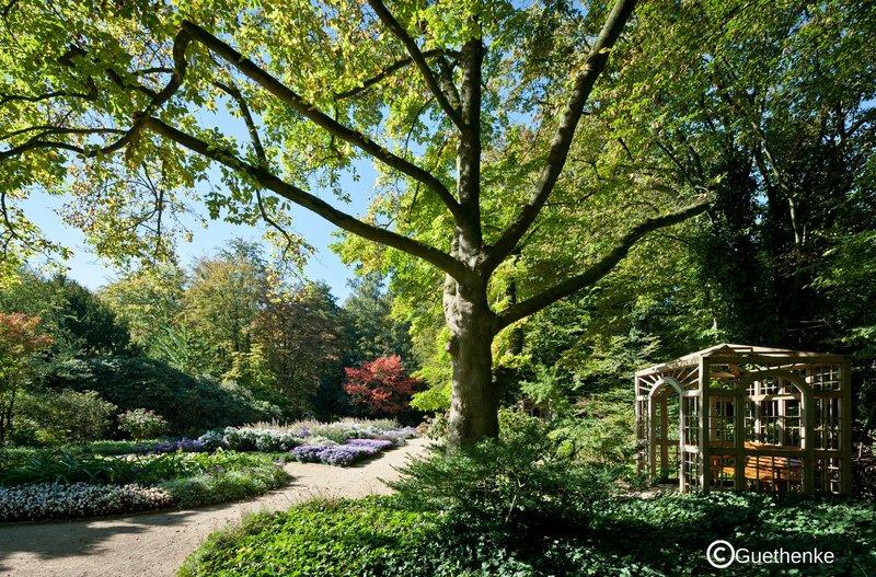 Holiday Inn Express Guetersloh-Municipal Park with Botanical Garden in Gütersloh<br/>Image from Leonardo