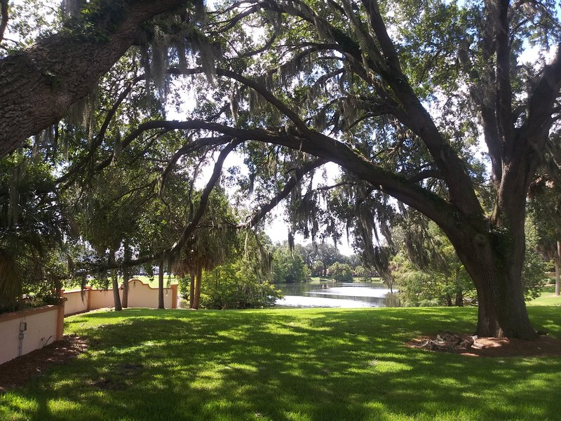 Holiday Inn Express & Suites The Villages-Green space outside the hotel<br/>Image from Leonardo