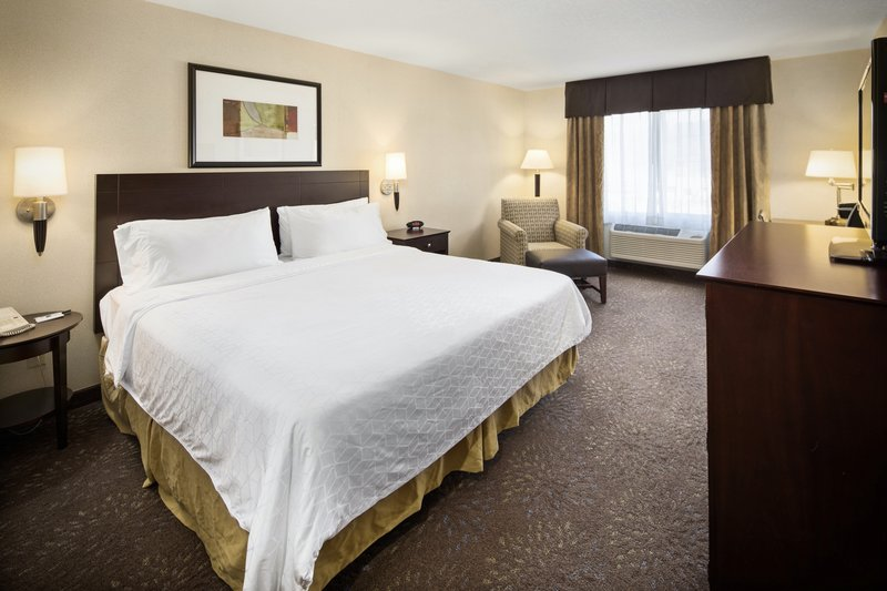 Holiday Inn Express & Suites Hill City Mt. Rushmore Area-One king bed <br/>Image from Leonardo
