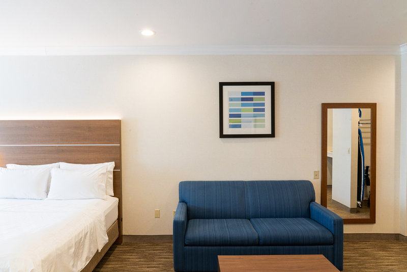 Holiday Inn Express & Suites Davis-University Area-Sofa bed available in all Suites. Not available in King ADA room. <br/>Image from Leonardo